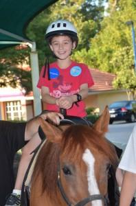 Horses (18)