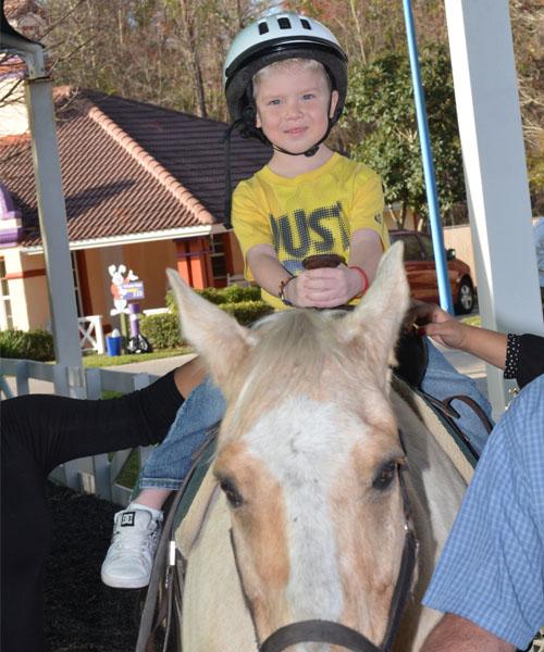 Karren_Horses_full